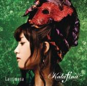Lacrimosa (Instrumental) - Kalafina