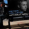 Without You (feat. J Rice) - Single, Peter Hollens