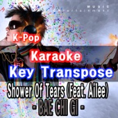 K-Pop Karaoke Key Transpose - I'm Sorry
