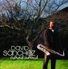 Monk's Mood - David Sanchez