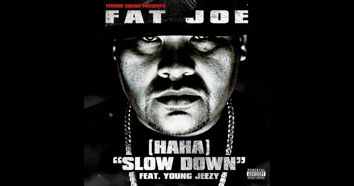 Plata O Plomo von Fat Joe feat Remy