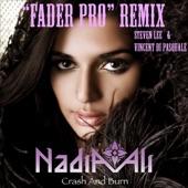 "Crash and Burn (Steven Lee & Vincent Di Pasquale ""Fader Pro"" Remix) - Single"