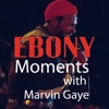 Ebony Moments with Marvin Gaye, Marvin Gaye & Jet Celebrity Showcase