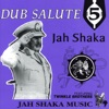Jah Shall Reign Dub (Feat. Twinkle Brothers)