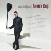 Ahmet Koç - Tükeneceğiz artwork
