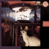 Blossom and Blood - Midnight Oil