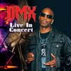 Live In Concert, DMX
