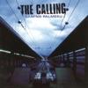 Camino Palmero, The Calling