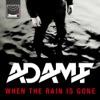 When the Rain Is Gone (Remixes) ジャケット写真