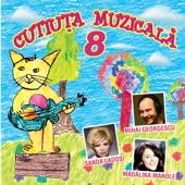 Cutiuta Muzicala 8