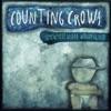 Somewhere Under Wonderland, Counting Crows