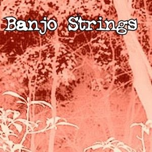 Banjo Strings Virtual Book Tour