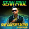 She Doesn't Mind (Pitbull Remix) - Single