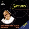 Sorrows, Vol. 69