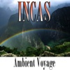 Ambient Voyage: Incas, Fly Project