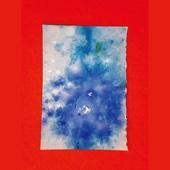 Carlos Niño & Ueno Takashi (Tenniscoats) - Tears of Transcendence portada