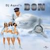 DJ Aqeel s Don