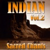 Ambient Voyage: Indians, Vol. 2, Fly Project