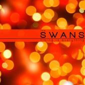 Seven Seas - The Swans