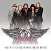 What Could Have Been Love - Single, Aerosmith