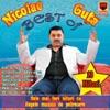 Best of Nicolae Guta, Nicolae Guta