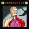 Supersonic - Single, Pearl Jam