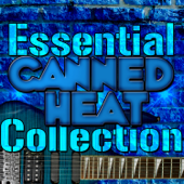 Essential Canned Heat Collection