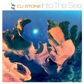 Into the Sea - EP