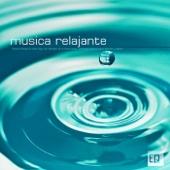 Música Relajante New Age con Sonidos de la Naturaleza