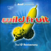 Azuli Presents Wild Fruit - the 10th Anniversary - Mix Edition - Single cover art