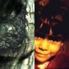 The Waltz of the Monsters / Cascade Street, Yann Tiersen