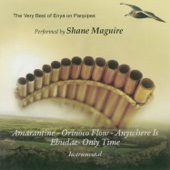 The Very Best of Enya On Panpipes - Shane Maguire