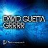 GRRRR - Single, David Guetta
