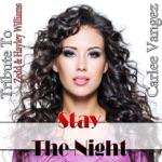Stay the Night: Tribute to Zedd & Hayley Williams - Single