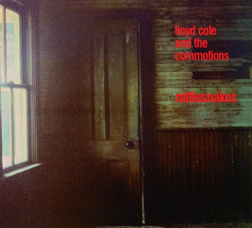 Forest Fire (Richard Skinner Session - BBC Radio 1 05/07/84) - Lloyd Cole & The Commotions