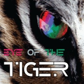 Eye of the Tiger - Eye of the Tiger (Single) bild