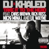 Take It to the Head (feat. Chris Brown, Rick Ross, Nicki Minaj & Lil Wayne) - Single, DJ Khaled