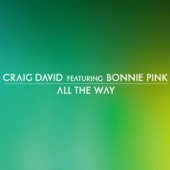 All the Way (feat. Bonnie Pink) - Single
