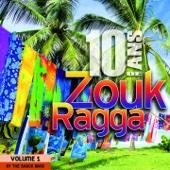 10 ans de Zouk Ragga, vol. 1 (Covers)