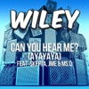 Wiley ft. Emeli Sand? - Never Be Your Woman