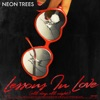Lessons In Love (All Day, All Night) [The Remixes] - EP, Neon Trees