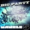 Big Party Manele, Vol. 5, Various Artists