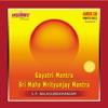 Gayatri Sri Maha Mrityunjay Mantra Divine Chants
