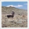 Laredo - Single, Band of Horses