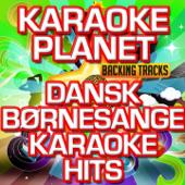 Dansk Børnesange Karaoke Hits (Karaoke Version)