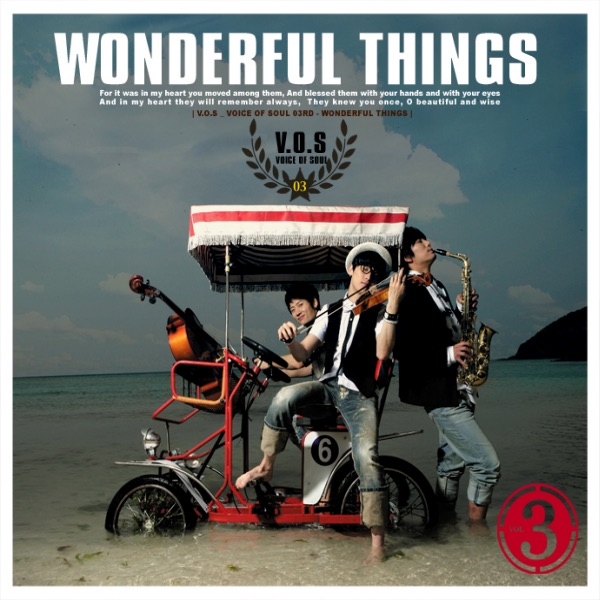 Wonderful Things by V.O.S. on iTunes