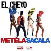 Metela Sacala