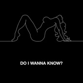 Do I Wanna Know? - Single cover art