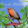 Gentle Birdsong, Sounds of the Earth