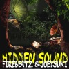 Hidden Sound - Single
